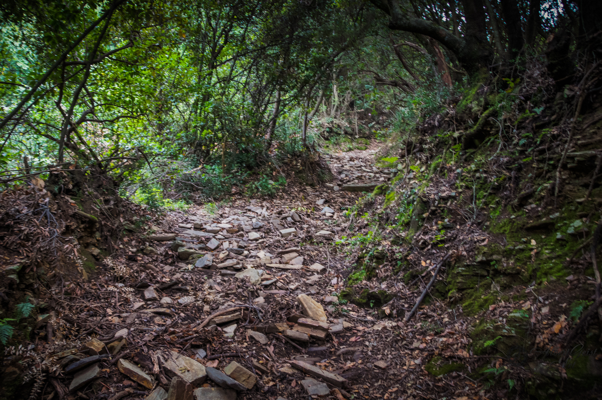 Паломничество по Святой Горе Афон. Часть 1