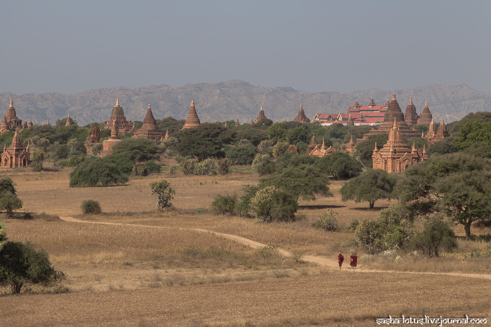 Bagan - the city of a thousand temples