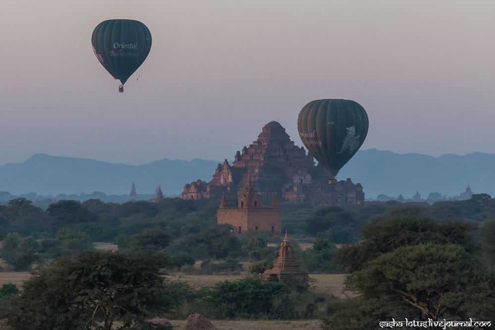 Ballons Over Bagan