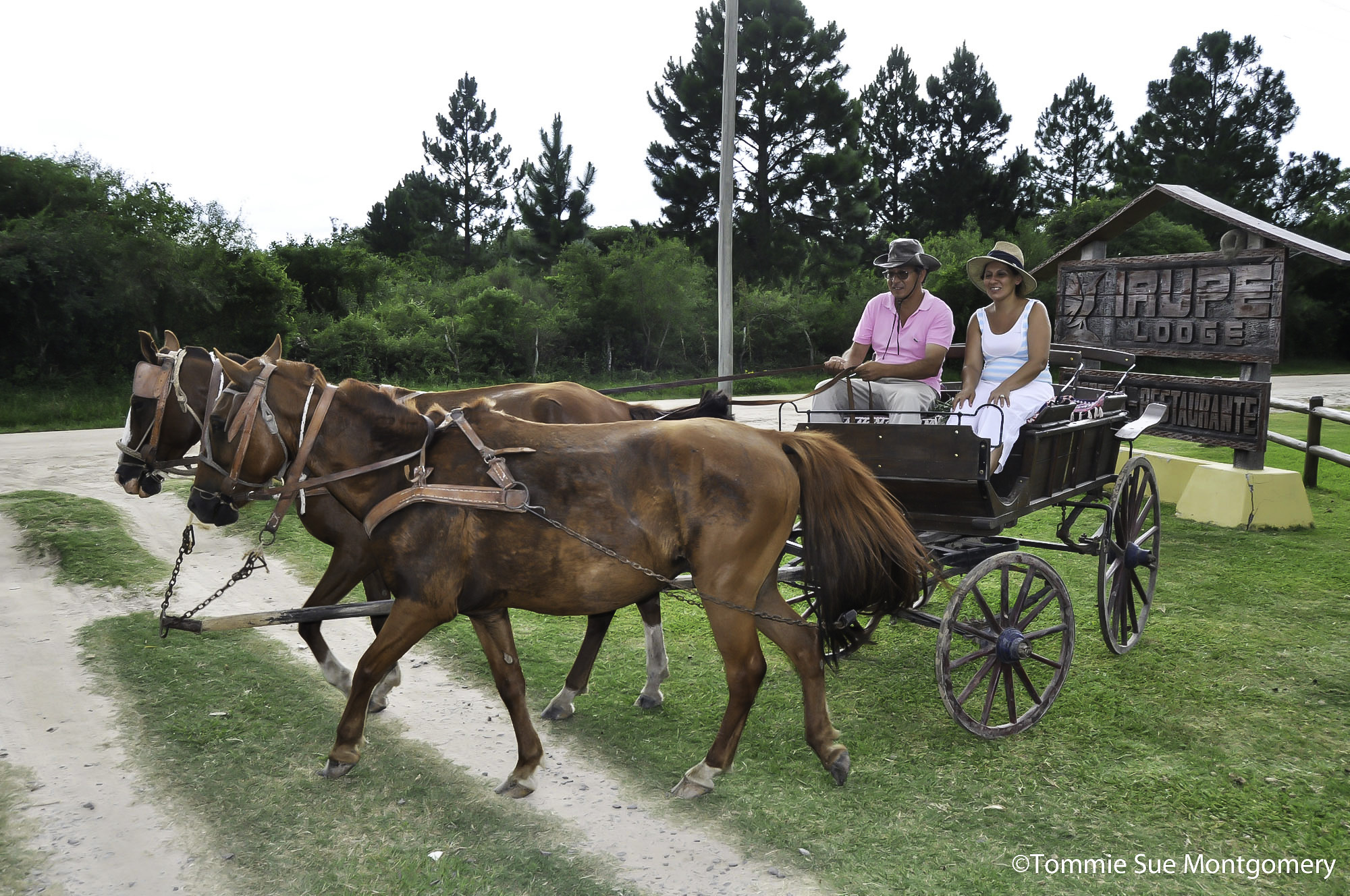 horse-drawn wooden cart