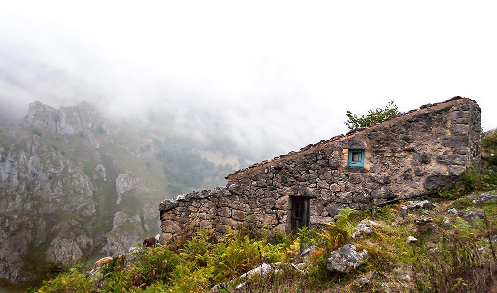 За сыром Кабралес - путешествие по Астурии.