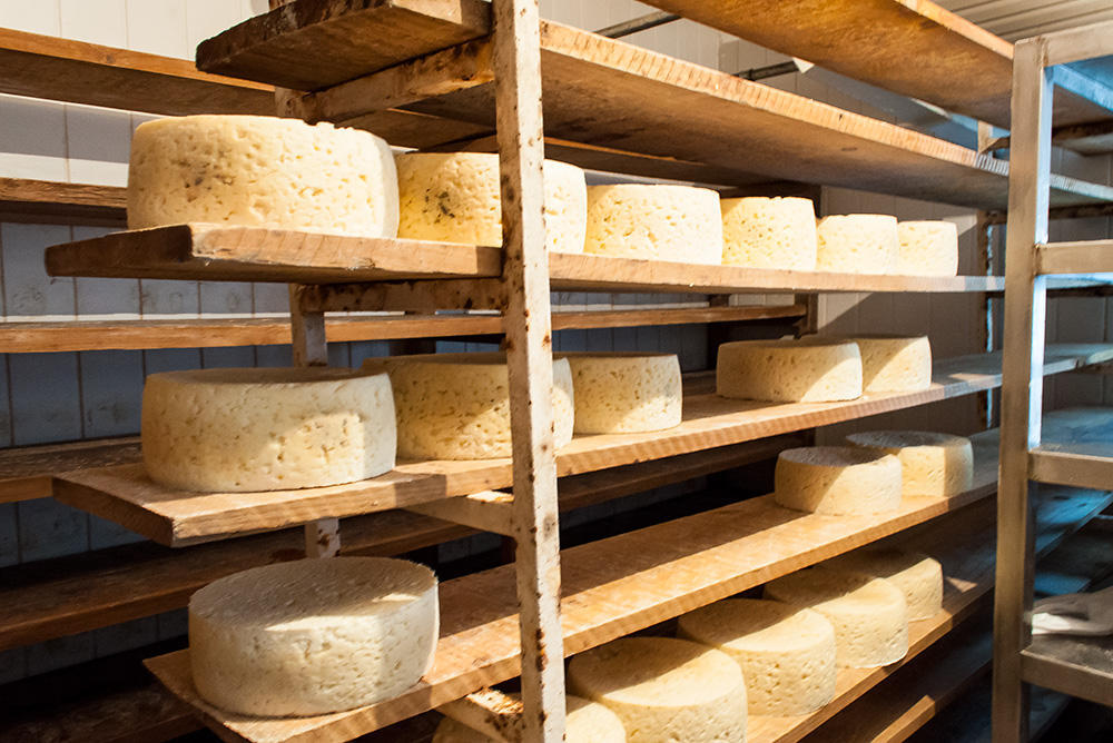 За сыром