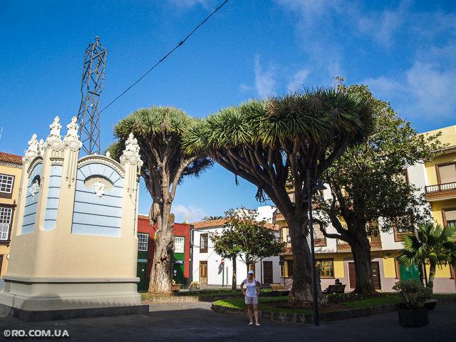 Северная часть Тенерифе