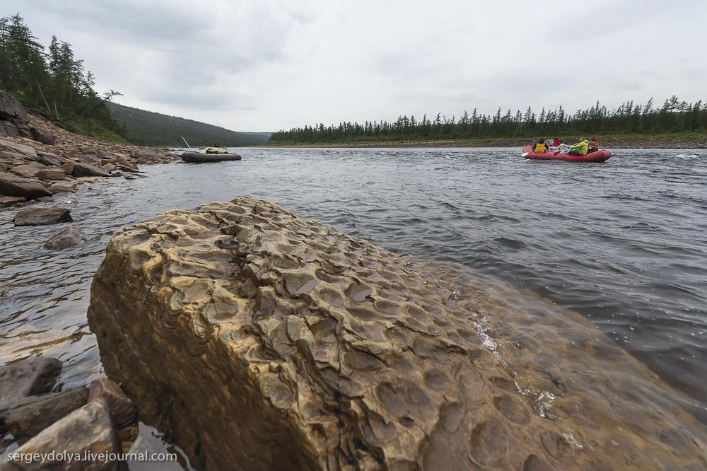 Сплав по реке Котуйкан. День 4. Строматолиты